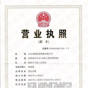 统一社会信用代码:913709827823133856 Business License Registration Number